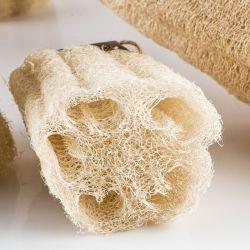 Loufa - roślinna gąbka do mycia i masażu ciała 12-15 cm.